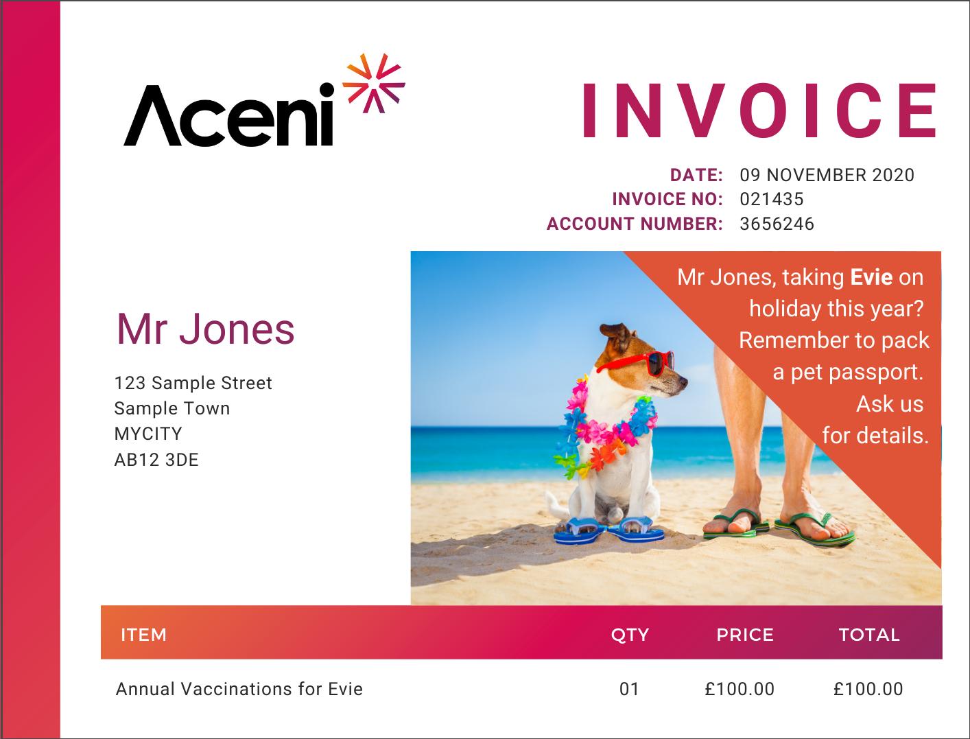 Aceni Invoice Personalised Sample 1220