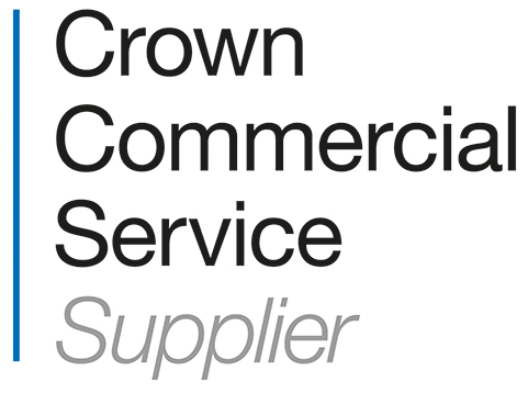 Crown Commercial Services (CCS) G-Cloud 12 supplier