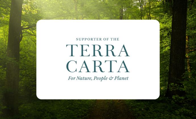 Datagraphic Terra Carta Supporter